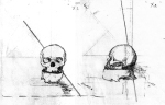 Two drawings of Jimmie's skull by Dr. Edward Schaeffer